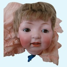 Large J. D. Kestner Bisque Head Character #211, Open/Closed Mouth, Original Wig in Tact