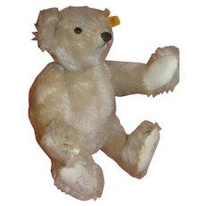 12 Inch Signed Vintage German Steiff White Bear #0167/32 1985
