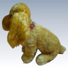 Steiff Cocker Spaniel, Seated, Button in Ear