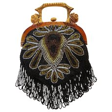 REDUCED!  Fantastic Celluloid Two Sided Carved Hard Handle Parrot Purse