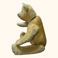 Old 17 Inch Gold Mohair Hump Back Bear with Swivel Neck Shoe Button Eyes
