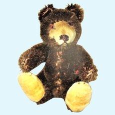 "3.5"" Chocolate Teddy Baby US Zone No ID"