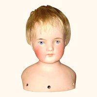 6 Inch Size 10 Kling 123 Dome Shoulder Head Short Blond  Mohair Wig