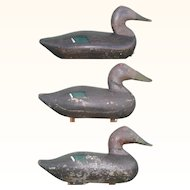 3 Old High Head Susquehanna Flats Black Duck Rig Mate Decoys Old Working Feather Paint Applied Weights