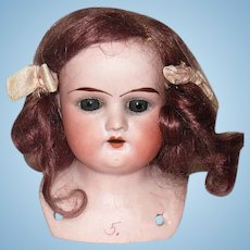 3.5 Inch Bisque Shoulder Head Incised Ruth Blue Glass Eyes Original Auburn Mohair Wig with Bows