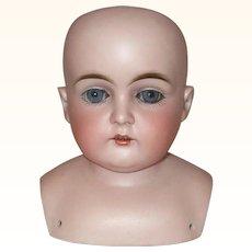 5 Inch Kestner 148 Size 7 1/2 Bisque Shoulder Head Blue Sleep Eyes Good Bisque and Painting