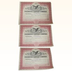 Three 1924 Southern Coal and Iron Corporation Stock Certificates.