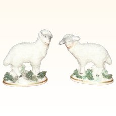 2 Wee Chelsea Gold Anchor Woolly Sheep On Mossy Bases