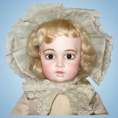 15 Inch Circle Dot Bru Bulgy Brown PW Eyes Original  Body Frail Skin Wig Cork Pate Signed Shoes Good Arms Hands