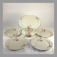 Wonderful Furstenberg Germany teapot and dish set, pink roses