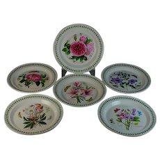 "5 Portmeirion Botanic Garden Dinner Plates 10.5"" and one Portmeirion Rose"