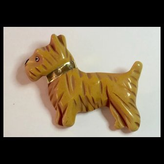 1930s Cream Bakelite Heavily Carved Scotty Dog Pin Brooch Gold Leather Collar