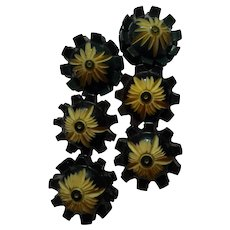 Set of 6 1920s Carved and Stained Celluloid Floral Buttons