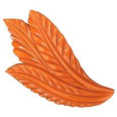 1930s Art Deco Butterscotch Bakelite Large Detail Carved Leaf Brooch Pin