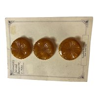 1930s Bakelite Carved Butterscotch Floral 2-hole Sew On Buttons Set of Three (3)