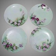 Set of 4 Hand Painted Sevres Bavaria Porcelain Decorative Floral Plates