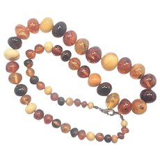"""Baltic Amber Graduated Necklace  21"""""""