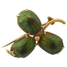 Victorian Genuine Scarb Beetle Leaf Pin