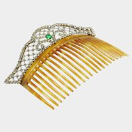 Large Hair Comb with Pastes