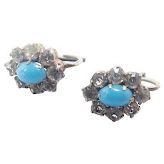 French Antique Silver and Paste Lever Back Earrings