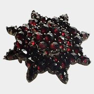 French Regional Garnet and Silver Gilt Pin