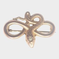 French Art Nouveau Gold Filled Snake Pin