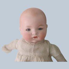 """Antique AM Bisque Baby Doll 15"""""""