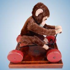 Steiff Peter Monkey on Wheels 1950's