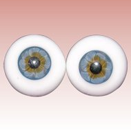 24MM Glass blown Blue eyes