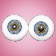 German 24MM Glass blown Blue eyes