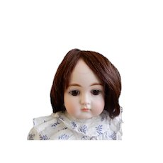 French Human Hair 9.5  Inch Wig to Style