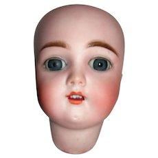 """9"""" HC Handwerck Bisque Head TLC"""