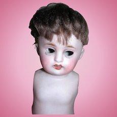 Original Wig for All bisque Dolls