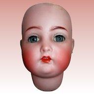"10"" Head Circumference #403 K*R Simon Halbig Bisque head"