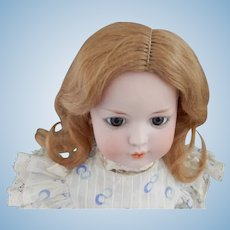 Soft Clean Mohair Wig in Great Shade