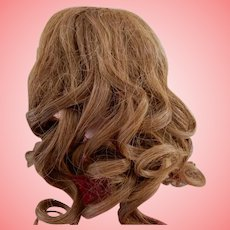 Antique Luxurious   HH Wig 12-13 Inch
