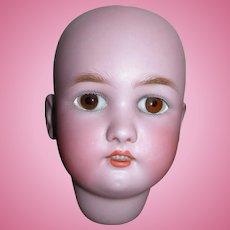 Beautiful Bisque Head #1349 Dressel S&H