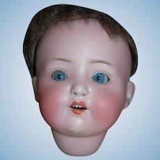 Antique Baby Bisque Head HK #320