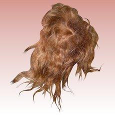 Antique golden brown Mohair wig & cardboard pate; bangs!