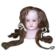 "Antique Brown Human Hair wig 12"" HC Long Curls"
