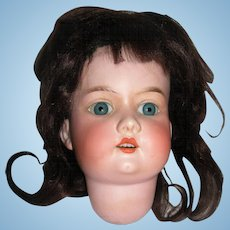 """10"""" HC A3M Rosebud Bisque Head with Mohair wig"""