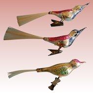 Three Vintage birds