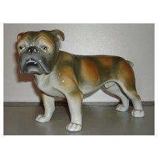 Vintage German Porcelain Bull Dog Figurine