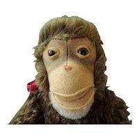 Steiff Jocko Chimpanzee With Working Squeaker 1960s