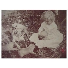 Stereoview Stereo View Card Underwood & Underwood Photographer Geo Barker Girl Playing With Puppies