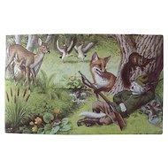 Mainzer Dressed Cat Hunter Postcard Number 4921