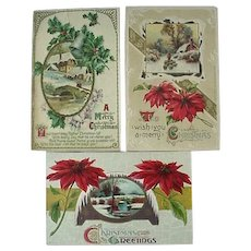 Christmas Postcards Winter Scenes Poinsettias Lot of 3