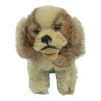 "Vintage Steiff ""Cockie"" 1950's Dog Cocker Spaniel With Button & Tag"