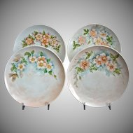 Hutschenreuther Hand Painted Dessert Plates, Set of 4