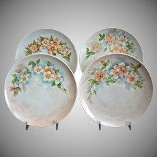 Hutschenreuther Hand Painted Dessert Plates, Set of 4